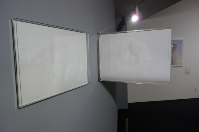 Installation photograph of Peta Clancy's 'She carries it all like a map on her skin' (2014-15)