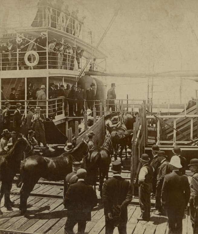 Rose's Stereoscopic Views. '2nd Victorian Contingent. Horses Going Aboard.' Melbourne, Boer War, 1899-1900 (detail)