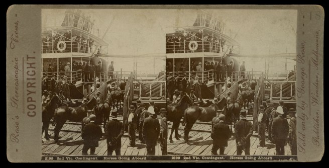 Rose's Stereoscopic Views. '2nd Victorian Contingent. Horses Going Aboard.' Melbourne, Boer War, 1899-1900