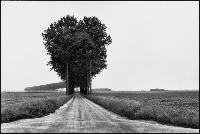 Henri Cartier-Bresson. 'Brie, France, June 1968'