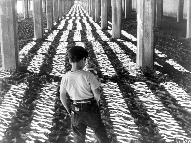 Morris Engel. 'Little Fugitive', production still, 1953