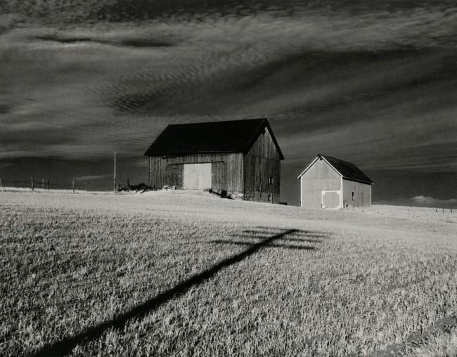 Minor White (American, 1908–1976) 'Vicinity of Danville, New York' 1955