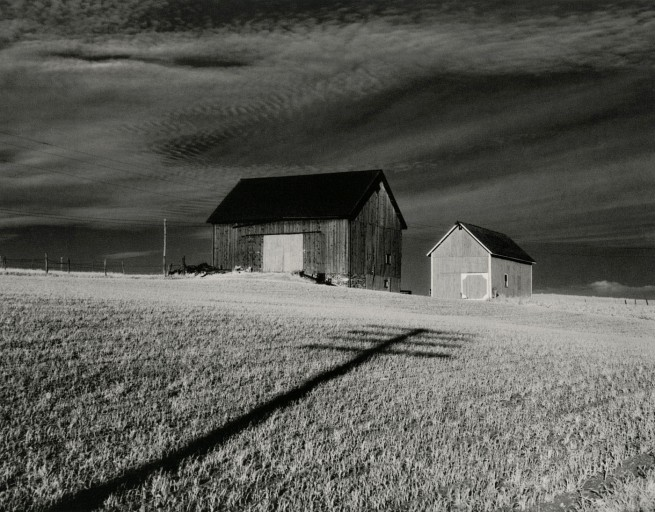 Minor White (American, 1908–1976) 'Vicinity of Danville, New York' 1955