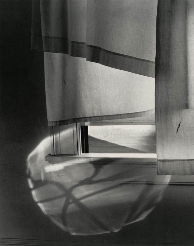Minor White (American, 1908–1976) 'Windowsill Daydreaming, Rochester, New York' 1958