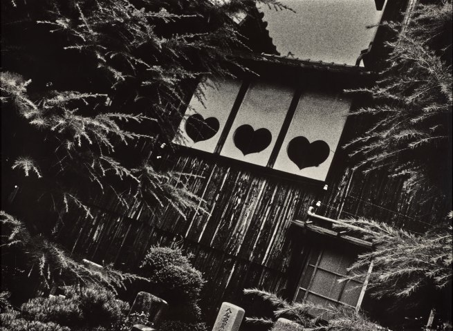 Ishiuchi Miyako. 'Endless Night #2' 1978–1980