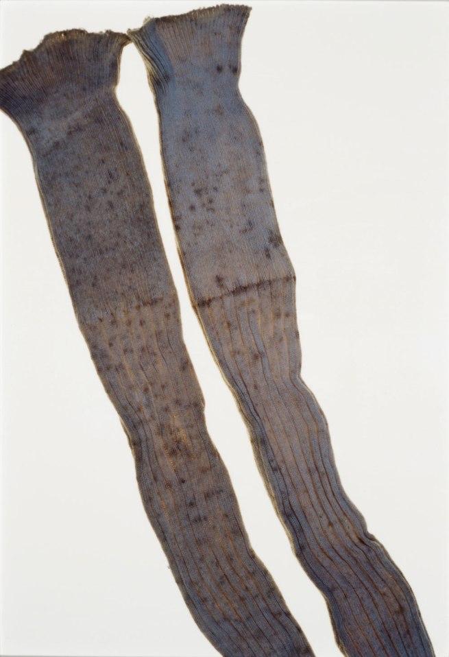Ishiuchi Miyako. 'ひろしま/hiroshima #60 (Abe Hatsuko)' 2007