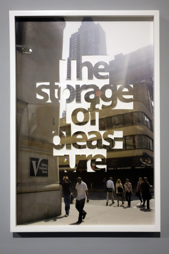 Martin SMITH. 'pleasure / storage' 2012