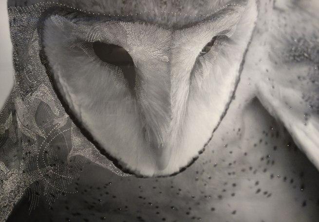 Joshua YELDHAM. 'Owl of tranquillity' 2015