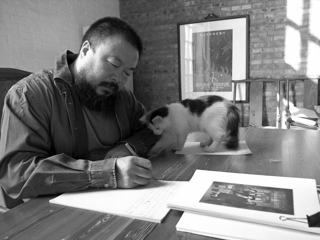 Ai Weiwei (Chinese 1957- ) 'Ai Weiwei with cat, @aiww, Instagram' 2006