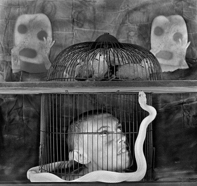 Roger Ballen. 'Caged' 2011