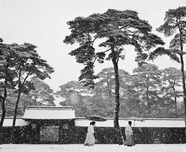 Werner Bischof (1916 - 1954) 'Courtyard of the Meiji shrine' Tokyo, Japan 1951