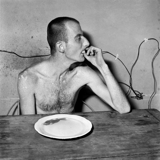 Roger Ballen. 'Lunchtime' 2001