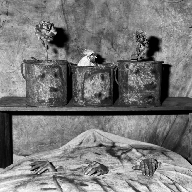 Roger Ballen. 'Three hands' 2006