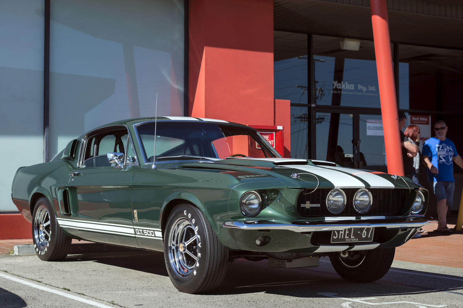 Andrew follows 1967 ford shelby mustang g t 500 cobra - Mustang cobra ...