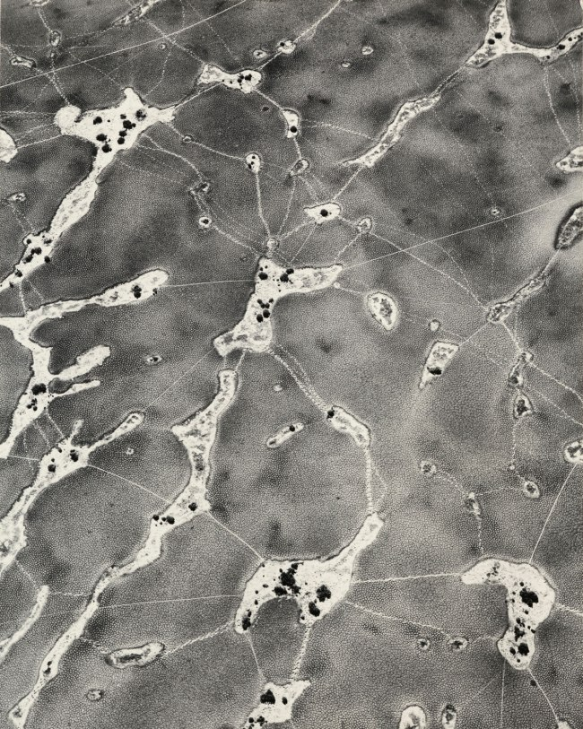 William Garnett (American, 1916-2006) 'Animal Tracks on Dry Lake' 1955