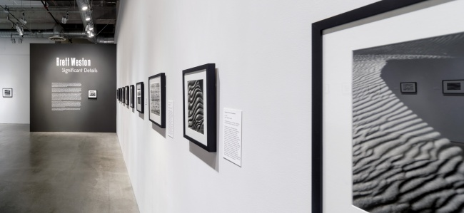 Installation view of the exhibition 'Brett Weston: Significant Details' at the Pasadena Museum of California Art