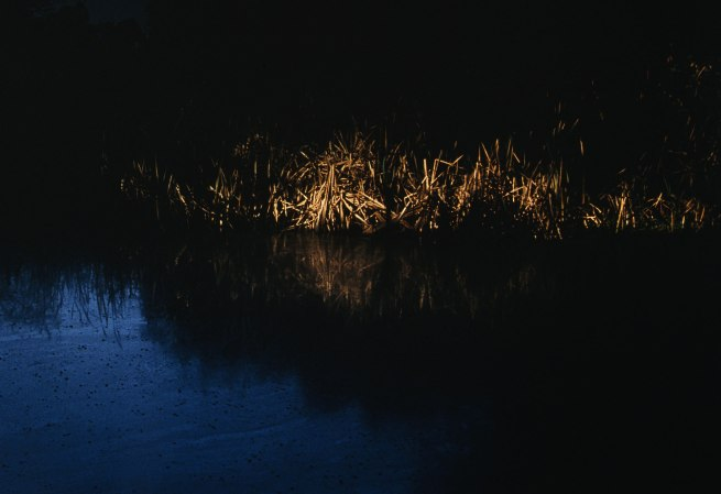 Bill Henson. 'Untitled 2005/2006' (detail) 2005-2006