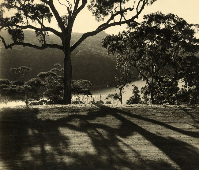 Olive Cotton (Australian, 1911 - 2003) 'The patterned road' 1938