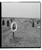 Marcus Bunyan. 'IOTA, 1893, Napoli, Cantanese Domenico, age 14 with gravestones' 1993