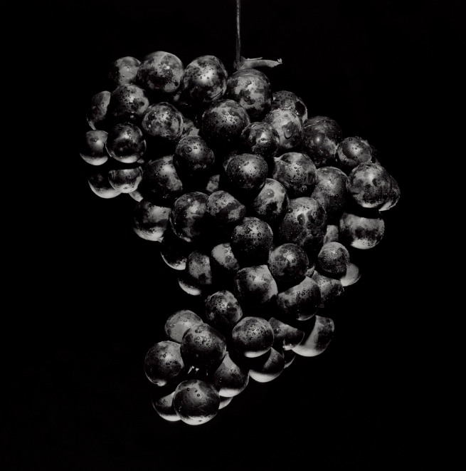 Robert Mapplethorpe (American, 1946-1989) 'Grapes' 1985