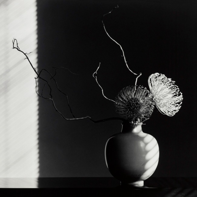 Robert Mapplethorpe (American, 1946-1989) 'Flower Arrangement' 1986