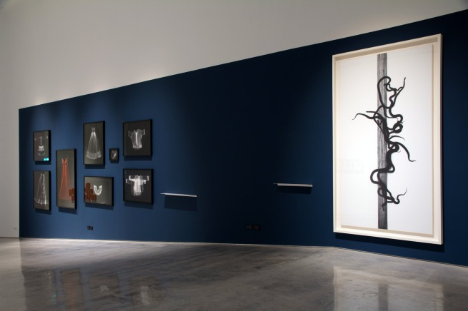 Installation view of the exhibition 'Emanations: The Art of the Cameraless Photograph' at the Govett-Brewster Art Gallery with, at left, Anne Ferran and, at right, Adam Fuss