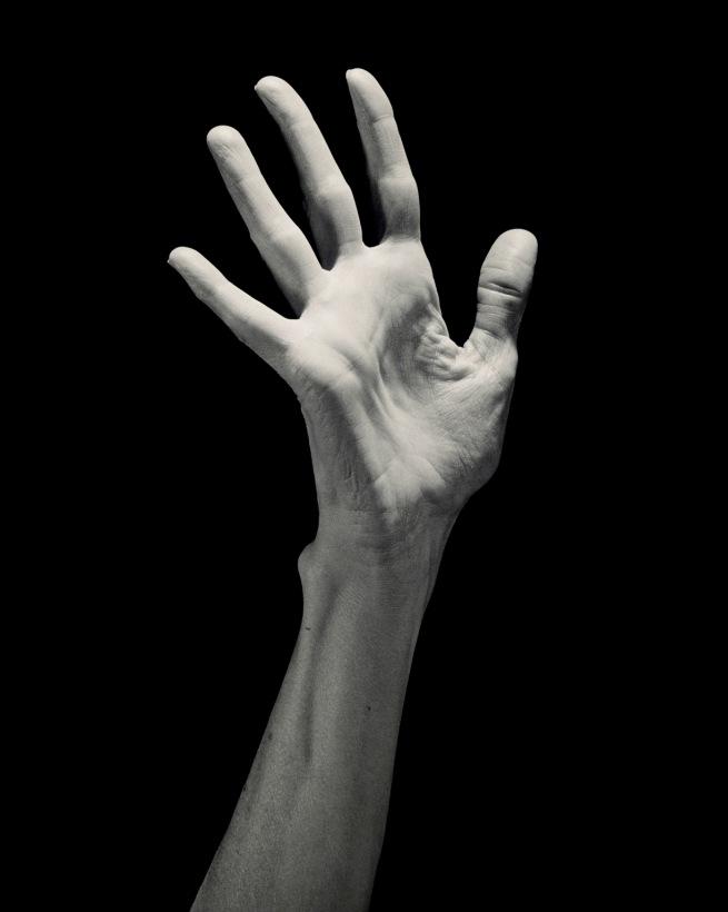 Robert Mapplethorpe (American, 1946-1989) 'Lucinda's Hand' 1985