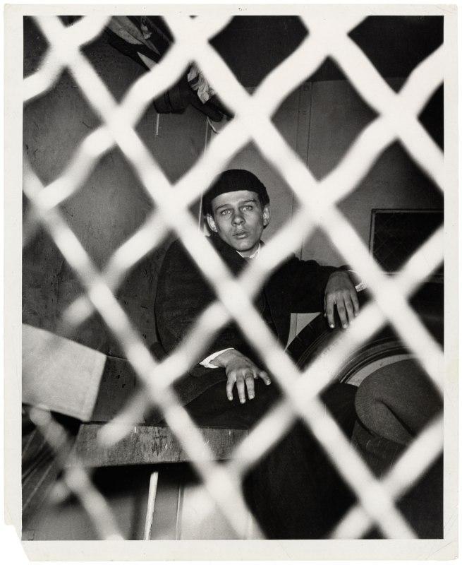 Weegee (American, born Ukraine (Austria), Złoczów (Zolochiv) 1899 - 1968 New York) 'Frank Pape, Arrested for Homicide' 1944