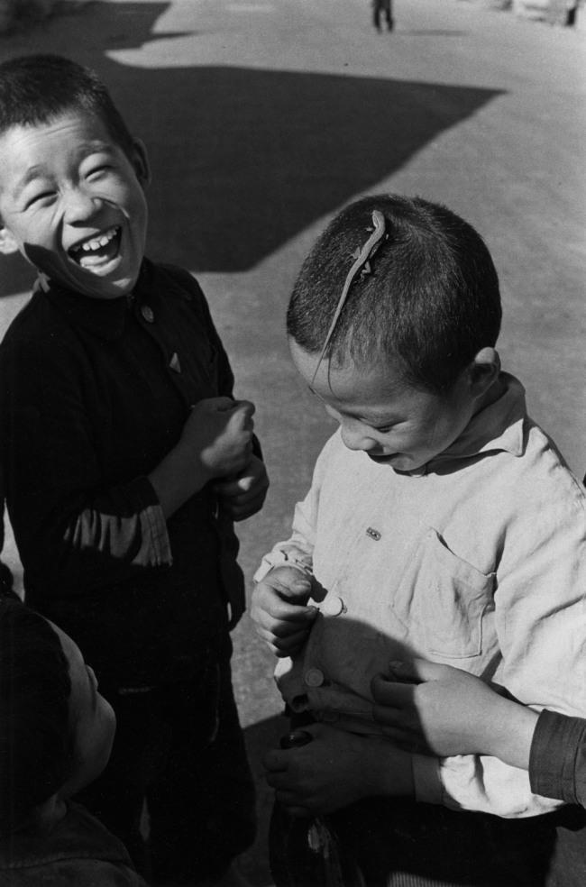 Ken Domon. 'Lucertola [Lizard]' 1955