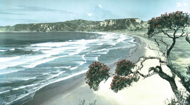 HAND-COLOURED NEW ZEALAND THE PHOTOGRAPHS OF WHITES AVIATION by Peter Alsop