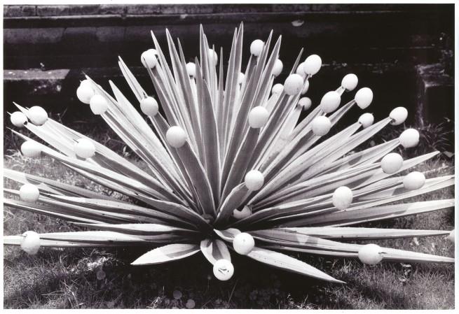 Michel François. 'Affiche Cactus' 1997