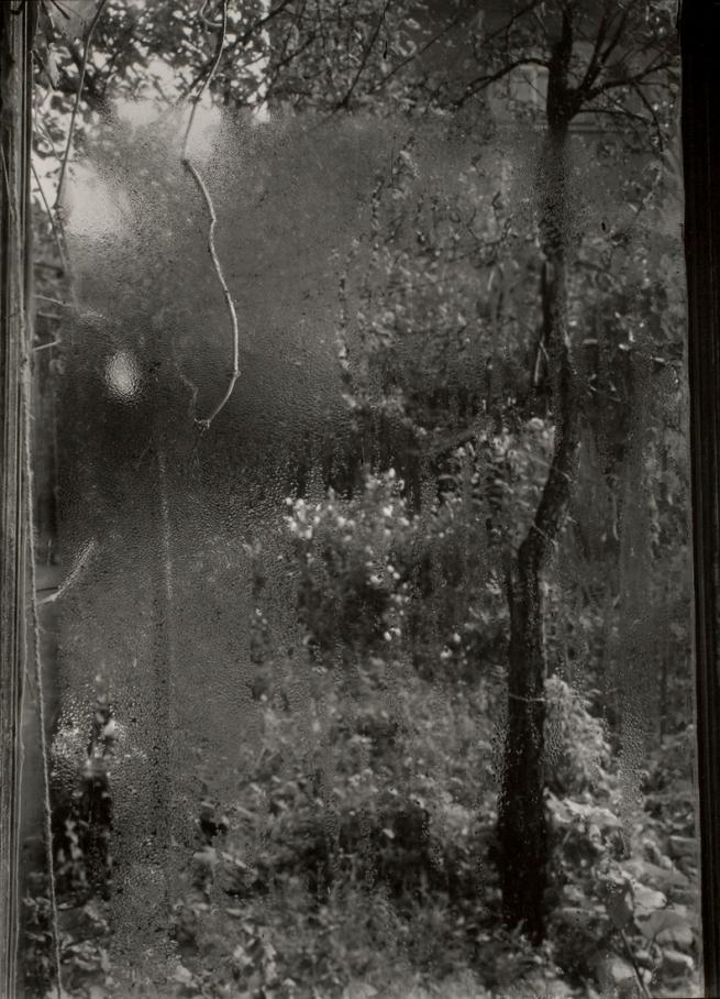 Josef Sudek. 'Quatre saisons: l'été' c. 1940-1954