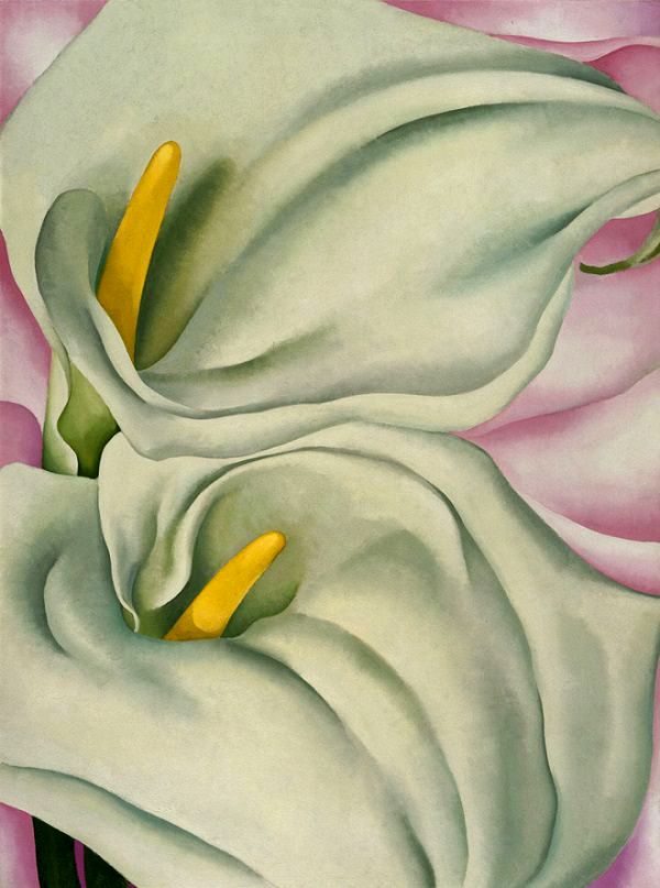 Georgia O'Keeffe (1887-1986) 'Two Calla Lilies on Pink' 1928