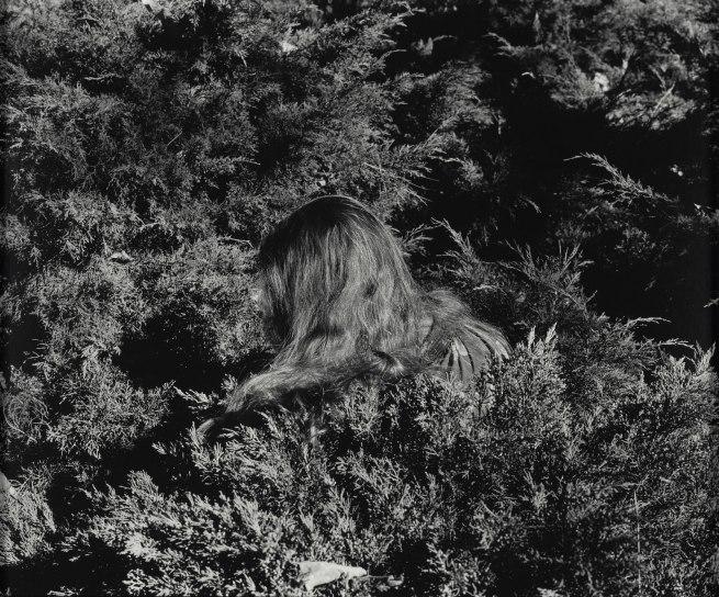 Whitney Hubbs (American, born 1977) 'Untitled (Hair)' 2012