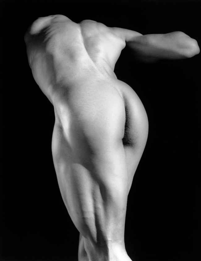 Robert Mapplethorpe. 'Michael Reed' 1987