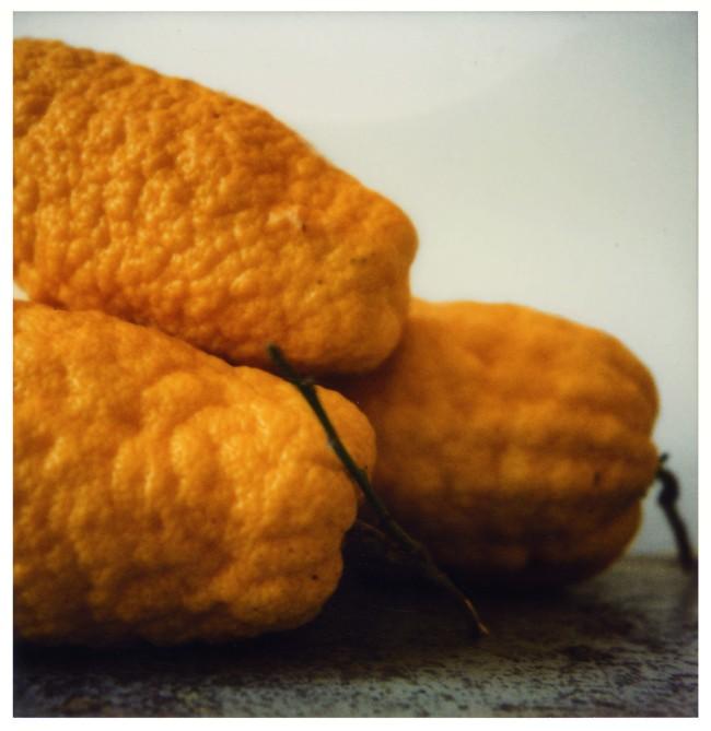 Cy Twombly 'Lemons (VI)' (Gaète) (detail) 1998