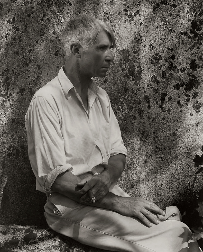an analysis of the life and career of carl sandburg an american poet About carl sandburg the road and the end carl sandburg and analysis of literary works the road and the end title paraphrase the poet is trying to show how life is like a road you must follow.