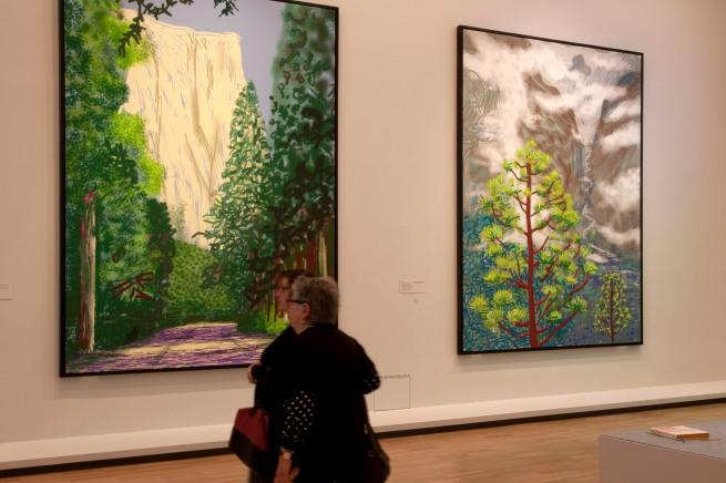 David Hockney (English 1937- ) 'Yosemite' series (installation view) 2011