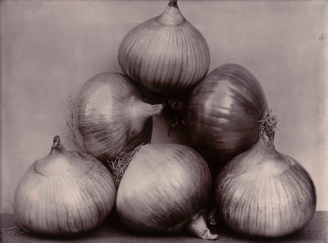 Charles Harry Jones (British, 1866-1959) 'Onions' c. 1900