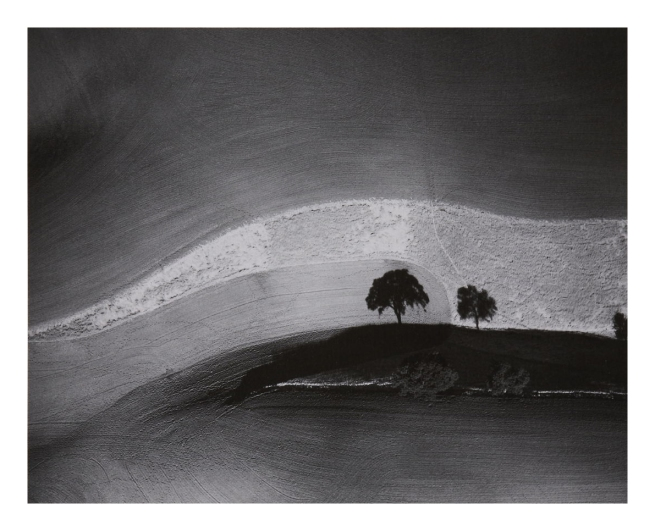 William A. Garnett (1916-2006) 'Two Trees on Hill with Shadow, Paso Robles, CA' 1974