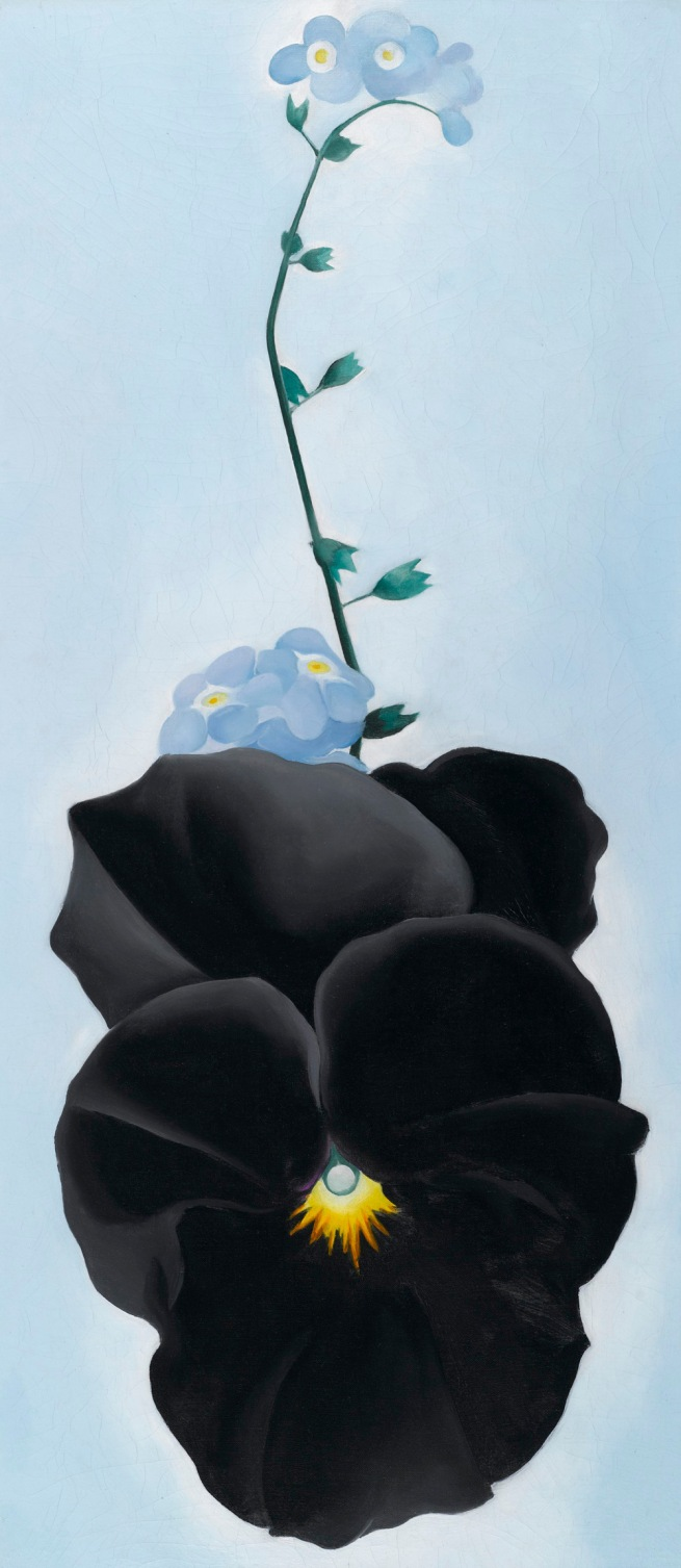 Georgia O'Keeffe (American, 1887-1986) 'Black Pansy & Forget-Me-Nots (Pansy)' 1926