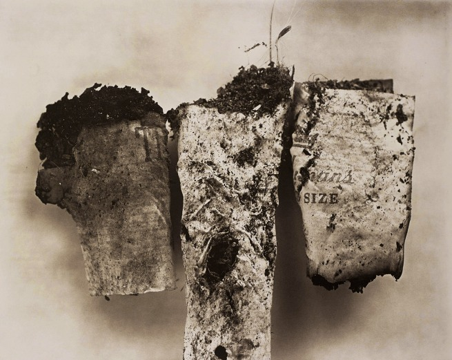 Irving Penn (American, Plainfield, New Jersey 1917-2009 New York) 'Cigarette No. 85, New York' 1972, printed Fall 1975