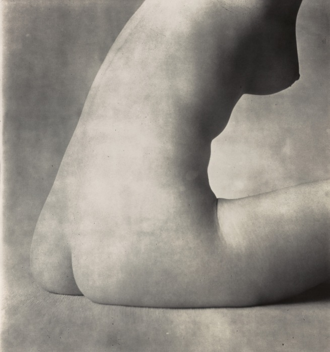 Irving Penn (American, Plainfield, New Jersey 1917-2009 New York) 'Nude No. 18' 1949-50, printed 1949-50