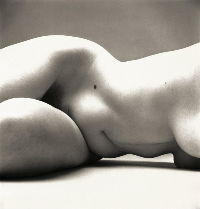 Irving Penn (American, Plainfield, New Jersey 1917-2009 New York) 'Nude No. 72' 1949-50, printed 1949-50