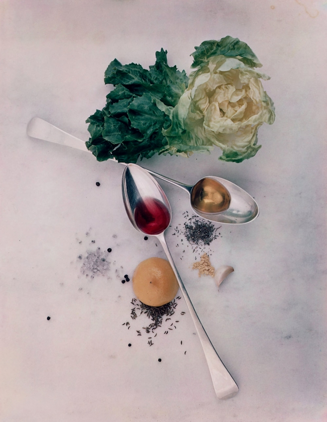 Irving Penn (American, Plainfield, New Jersey 1917-2009 New York) 'Salad Ingredients, New York' 1947, printed 1984