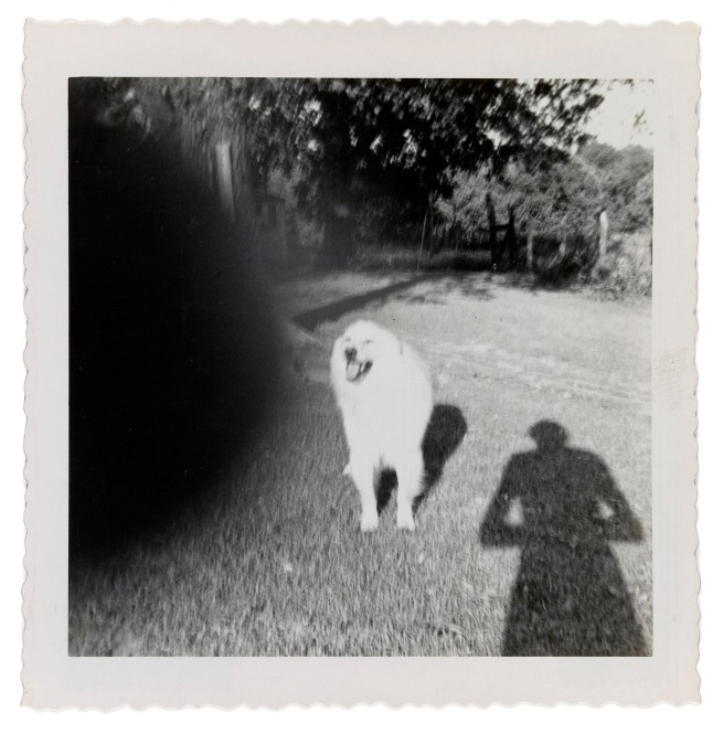 Patrick Pound (New Zealander/Australian 1962- ) 'The hand of the photographer'(detail) 2007-17