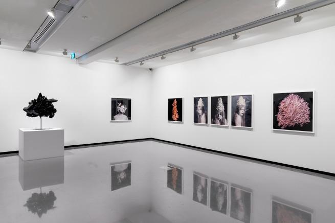 'Christian Thompson: Ritual intimacy', installation view: Monash University Museum of Art, Melbourne 2017