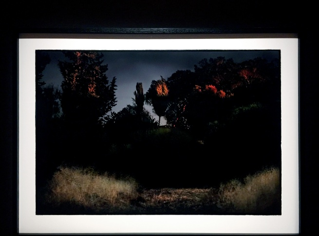 Bill Henson (Australian born 1955) 'Untitled #9' 2008/2009