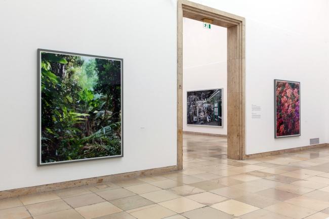 Installation view of the exhibition 'Thomas Struth: Figure Ground' at Haus der Kunst, Munich
