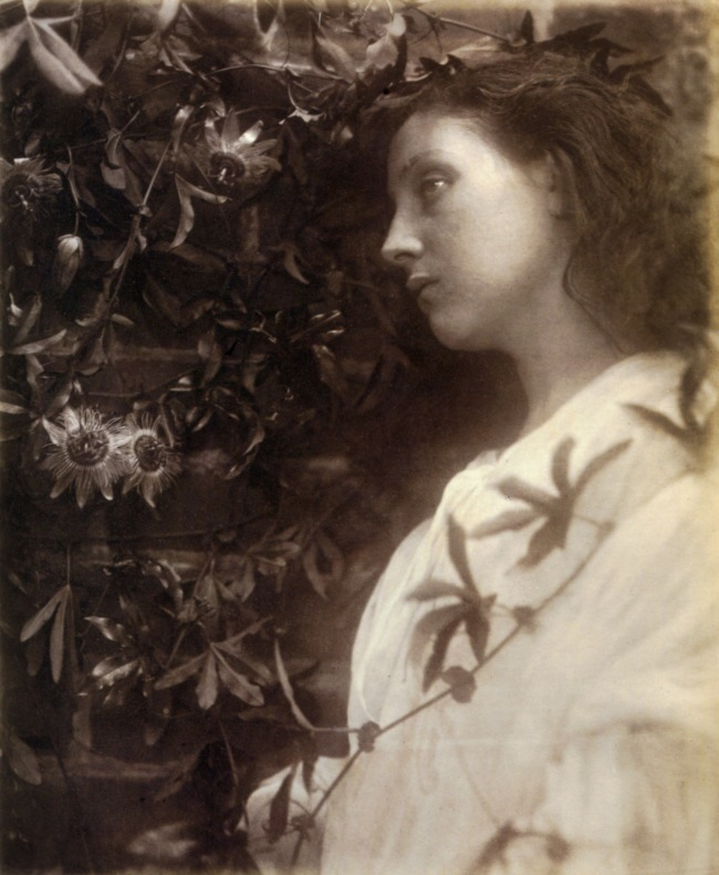 "Julia Margaret Cameron. 'Maud ""There has Fallen a splendid Tear From the Passion Flower at the Gate""' 1875"